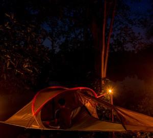 Tree camping 10