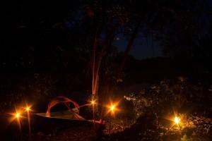 Tree camping 8