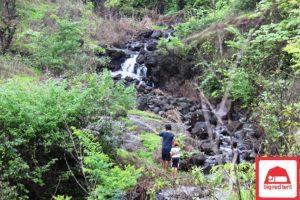 Monsoon Camping at Karnala 1