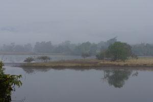 Monsoon Camping at Kolad
