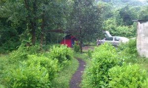 Monsoon Camping at Kolad 6