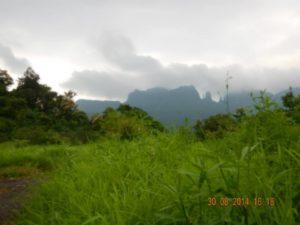 Monsoon Camping at Vasind 1