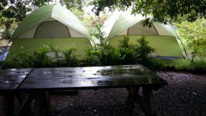 Monsoon Camping at Vasind 23