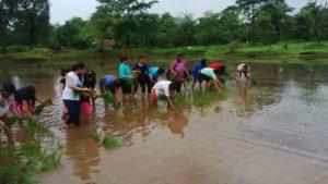 Monsoon Camping at Vasind 24